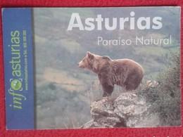SPAIN POSTAL POST CARD POSTCARD CARTE POSTALE ASTURIAS ESPAÑA PARAISO NATURAL INFO OSO PARDO BEAR OURS BÄR VER FOTO Y DE - Osos