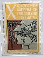 BUDAPEST 1913 X CONGRESSO INTERNAZIONALE INSEGNAMENTO COMMERCIALE   ERINNOFILO CHIUDILETTERA  ETICHETTA PUBBLICITARIA - Francobolli