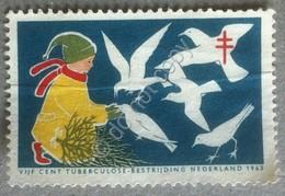 Erinnofilia Olanda 1963 - Tubercolose Bestrijding - Lotta Alla Tubercolosi MNH - Francobolli
