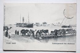 Port Said    Embarquement Des Chameaux - Port Said