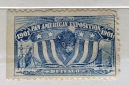 BUFFALO 1901 PAN AMERICAN ESPOSITION    ERINNOFILO CHIUDILETTERA ETICHETTA PUBBLICITARIA - Francobolli