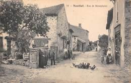 87 - Nantiat - Rue De Montplaisir Magnifiquement Animée - La Basse-Cour - Plan N°2 - Nantiat