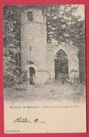 Yves-Gomzée  - Ruines De La Tourette - 1905 ( Voir Verso ) - Walcourt