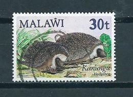 1984 Malawi Hedgehog 30t. Used/gebruikt/oblitere - Malawi (1964-...)