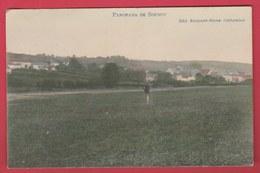 Soumoy - Joli Panorama Couleur ... Du Village , Personnage - 1910 ( Voir Verso ) - Cerfontaine