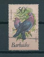 1979 Barbados Birds,oiseaux,vögel 50 Cent Used/gebruikt/oblitere - Barbados (1966-...)