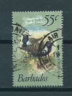 1981 Barbados Birds,oiseaux,vögel 55 Cent Used/gebruikt/oblitere - Barbados (1966-...)