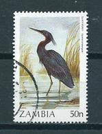 1987 Zambia 50n Birds,oiseaux,vögel Used/gebruikt/oblitere - Zambia (1965-...)