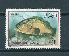 1985 Algeria Fish,fische,vissen Used/gebruikt/oblitere - Algerije (1962-...)