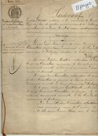 VP14.372 - SAINT - LOUP  -  Acte De 1888 - Donation & Licitation Par La Veuve CHEVALLIER De AUBIGNY à Ses Enfants - Manuscripts