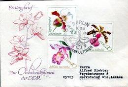 FDC,    DDR, GDR;    Orchid    /  Lettre De Première Jour,  ALLEMAGNE ORIENTALE, RDF, Orchidée   1968 - Orchidées