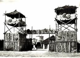 CPM* N°1423 - FLORALIX - LES TOURS DE GUET DU VILLAGE GAULOIS + CACHET - Orleans