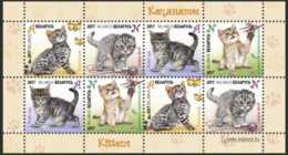 2017 Belarus - Kittens / Kätzchen -MS Of 2 Sets- Paper - MNH**  MiNr. 1169 - 1172 - Belarus