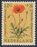 Nederland Netherlands Pays Bas 1960 Mi 749 YT 722 Sc B346 SG 896 ** Papaver Dubium : Saatmohn / Poppy / Slanke Klaproos - Planten
