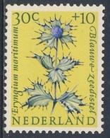 Nederland Netherlands Pays Bas 1960 Mi 750 YT 723 Sc B347 SG 897 ** Eryngium Maritimum : Blaue Stranddistel / Sea-holly - Planten