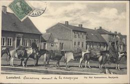 YT 36 Island Frimerki Cachet Agence Consulaire De France Reykjavik Lettre Bateau Troon CAD Troon Se 16 07 CPA Lestaferd - Cartas