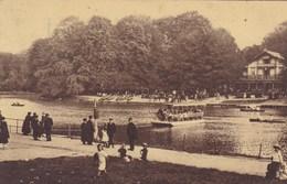Brussel, Bruxelles, Lac Du Bois De La Cambre, L'Ile Robinson (pk54898) - Bossen, Parken, Tuinen