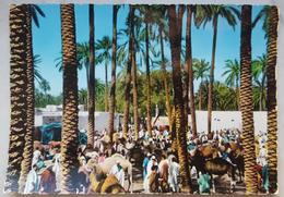 LIBYA - Suk El Giuma - Sook - Souk  Nv - Libia