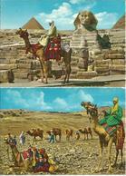 2 CARTOLINE EGITTO  (648) - Altri
