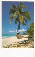 CARTE POSTALE  SURPRENANTE NATURE  PHOTO   NEUVE JJ SILLEBANQUE N° 444 EDT SOLARIS NOUMEA - Nouvelle-Calédonie
