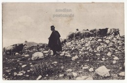GREECE SHEPHERD AND SHEEP SCENE, GREEK ETHNIC COSTUMES, 1917 VINTAGE POSTCARD - Greece