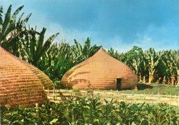 ETHIOPIA TYPICAL DWELINGS OF WOVEN BAMBOO SIDAMO PROVINCE CARTE PHOTO - Ethiopie
