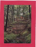4  Cartes De La Petite Suisse.et Environs. - Cartes Postales