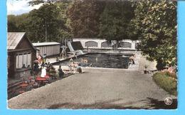 Anseremme (Dinant)-1966-Pont-à-Lesse-Castel Des Syndicats-La Piscine-animée - Dinant