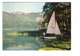 73 Un Coin Charmant Du Lac D' Aiguebelette En Savoie Cachet Lepin Lac 1972 , Bateau Voilier Deriveur - Francia
