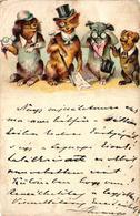 Dogs, Four Elegant Dog Gentlemen, Funny Old Litho Postcard 1902 - Dogs
