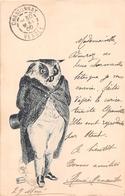 """¤¤  -  ILLUSTRATEUR  """" STAUT """" ???   -   Hibou , Grand Duc En 1900   -   ¤¤ - Boutet"""