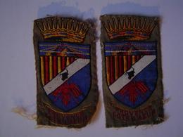 ECUSSON - INSIGNE TISSU Ancien : SCOUT / PROVENCE COTE D' AZUR - Scoutisme