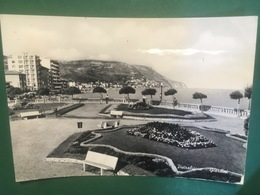 Cartolina Pietra Ligure - Riviera Delle Palme - Giardini - 1960 - Savona
