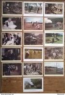 Lot De 24 Cartes Postales /Les Métiers D'antan / éditions Nivernaises - Paysans