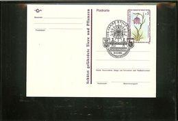 AUSTRIA - 175 Jahre STILLENACHT - LAUFEN - OBERNDORF - SALZBURG - SALZACHBRUCHE - PONTE Unisce Austria E Germania - Ponti