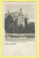 * Ecaussines Lalaing (Hainaut - La Wallonie) * (Ed Nels, Série 4, Nr 53) Chateau D'Ecaussinnes Lalaing, Kasteel, Rare - Ecaussinnes