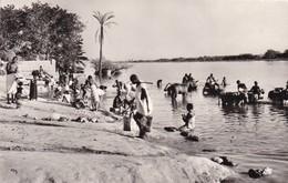 NIGER. NIAMEY. ANIMATION SUR LES BORDS DU NIGER. CORVEE D'EAU. ANNEE 1959 - Niger