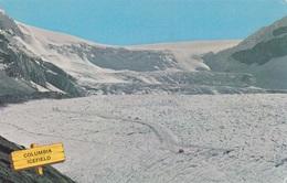 COLUMBIA ICEFIELD  VG   AUTENTICA 100% - British Columbia
