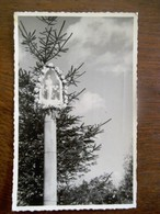 Oude  FOTO 1955     Postkaart  Nedelands - Limburg  KESSEL - België