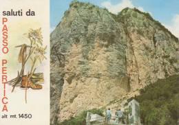 Saluti Da Passo Pertica ( Trento ) - Vedutine   -  Viaggiata - Trento