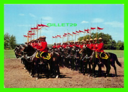 MÉTIERS - ROYAL CANADIAN MOUNTED POLICE - LES EXERCISES DU CARROUSEL - MAJESTIC POST CARD - - Police - Gendarmerie