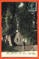 """CPA 52 Bourbonne Les Bains """" Parc De Montmorency - L'orme Géant """" - Bourbonne Les Bains"""