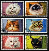 MANAMA - CHATS - MI 585 à 590 - SERIE COMPLETE 6 TIMBRES OBLITERES - Domestic Cats
