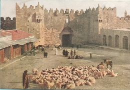 Israël : Jérusalem  Porte De Damas  Réf 5658 - Israel