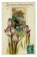 Carte Illustrée Gauffrée - Souhaits Sincères De Bonne Année (fleurs De Crocus Devant Un étang, Cygnes) Circulé 1910 - Thanksgiving