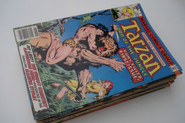 Tarzan - # 1 To 29 - Full Series - Marvel Comics Group - In English - 1977/1979 - Very Good Condition. - Marvel