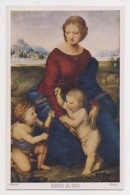 AK21 Art - Madonna In Green By Raphael - Paintings