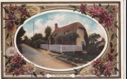 AO60 Greetings Postcard - A Haven Of Rest - Cottage, Flowers - Holidays & Celebrations