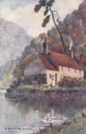 AO60 A Bit Of Old Tintern - Artist Signed Darren Williams? - Monmouthshire