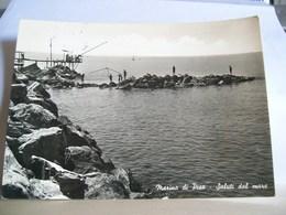 1956 - Pisa - Marina Di Pisa - Saluti Dal Mare - Trabucco Da Pesca - Pescatori - - Pisa